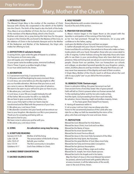 Document for Holy Hour Mary Mother of the Church.