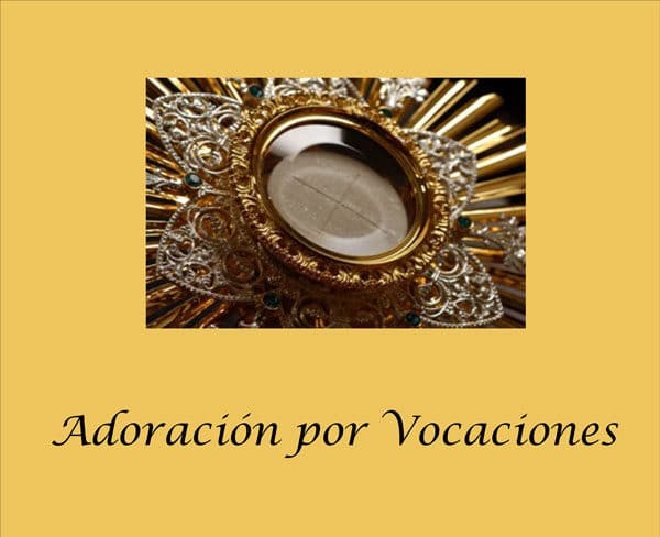 adoration for vocations banner spanish